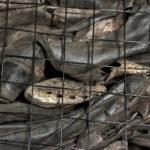 Centinaia di scarpe trovate nel campo